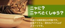 catnabe_tun